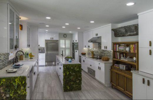 Seldes Tampa Contemporary Kitchen design