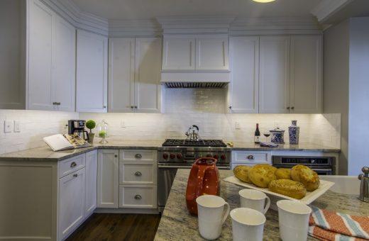 Tampa Seldes Designer Kitchen Cabinetry