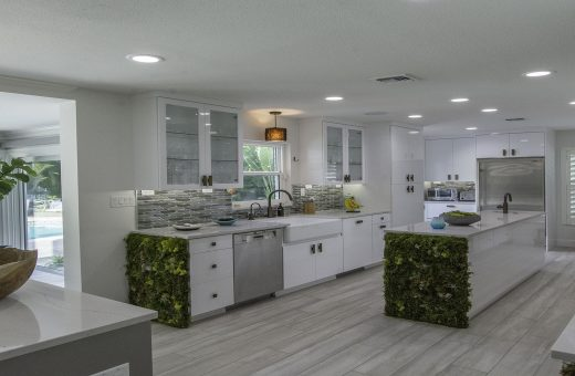 Tampa Seldes IDC Contemporary Kitchen