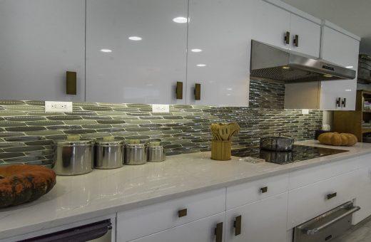 Tampa Seldes IDC Contemporary Kitchen