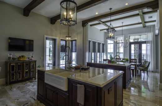 Tampa Designer Seldes Kitchen Renovation