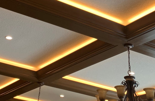 Johanna G. Seldes/IDC Interior Design Tampa Tray Ceiling